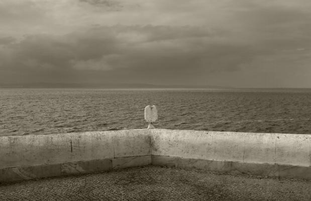 Luís Barreira  Alcochete, 2018  série:  Landscapes   Fotografia  arquivo:2018_07_01_DSCF8223