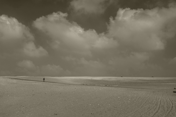 Luís Barreira   egyptian desert , 2018  série:  Landscapes   Fotografia  arquivo:2018_07_12_DSCF8325