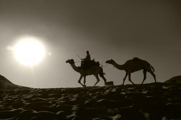 Luís Barreira  Caravana no deserto egípcio, 2018  série: Egipto  Fotografia  arquivo:2018_07_13_DSCF8692