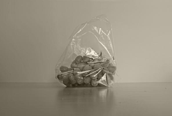 Luís Barreira  grapes in a plastic bag, 2018  série:   Still Life    Fotografia  arquivo: 2018_09_22_DSCF9675