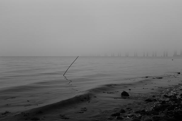 """Luís Barreira  """"paisagem rasgada""""  Lisboa, 2018  série: no parque  Fotografia  arquivo: 2018_12_02_DSCF0895"""