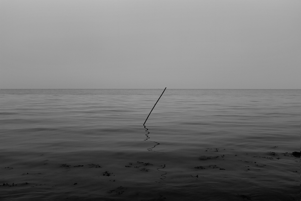 Luís Barreira  s/título, 2018  série:  Landscapes   Fotografia  arquivo: 2018_12_02_DSCF0898