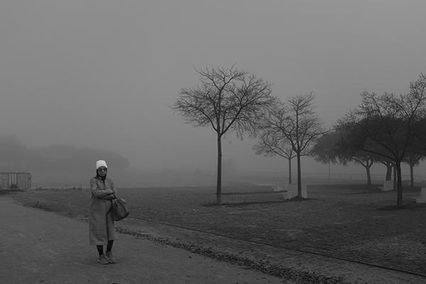 Luís Barreira  Inverno no parque, 2019  série: no parque  Fotografia  arquivo: 2019_01_03_DSCF1498