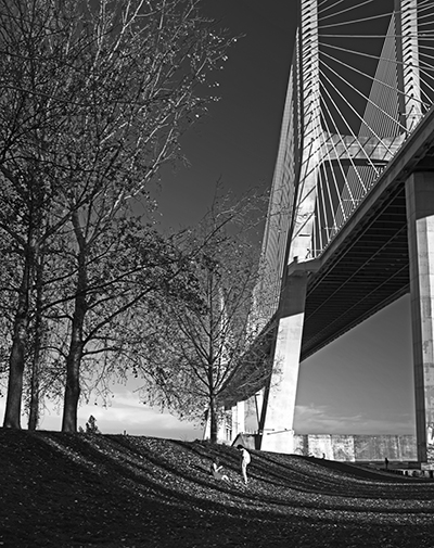 Luís Barreira  Ponte Vasco da Gama, 2019  série: no parque  Fotografia  arquivo: 2019_01_01_DSCF1397