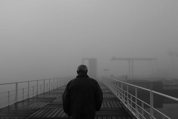 Luís Barreira  manhã de nevoeiro, 2018  série: no parque  Fotografia  arquivo: 2018_12_05_DSCF1022