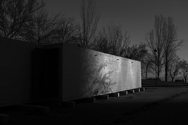 Luís Barreira  shadows, 2019  série: no parque  Fotografia  arquivo: 2019_0126_DSCF1673__Blog
