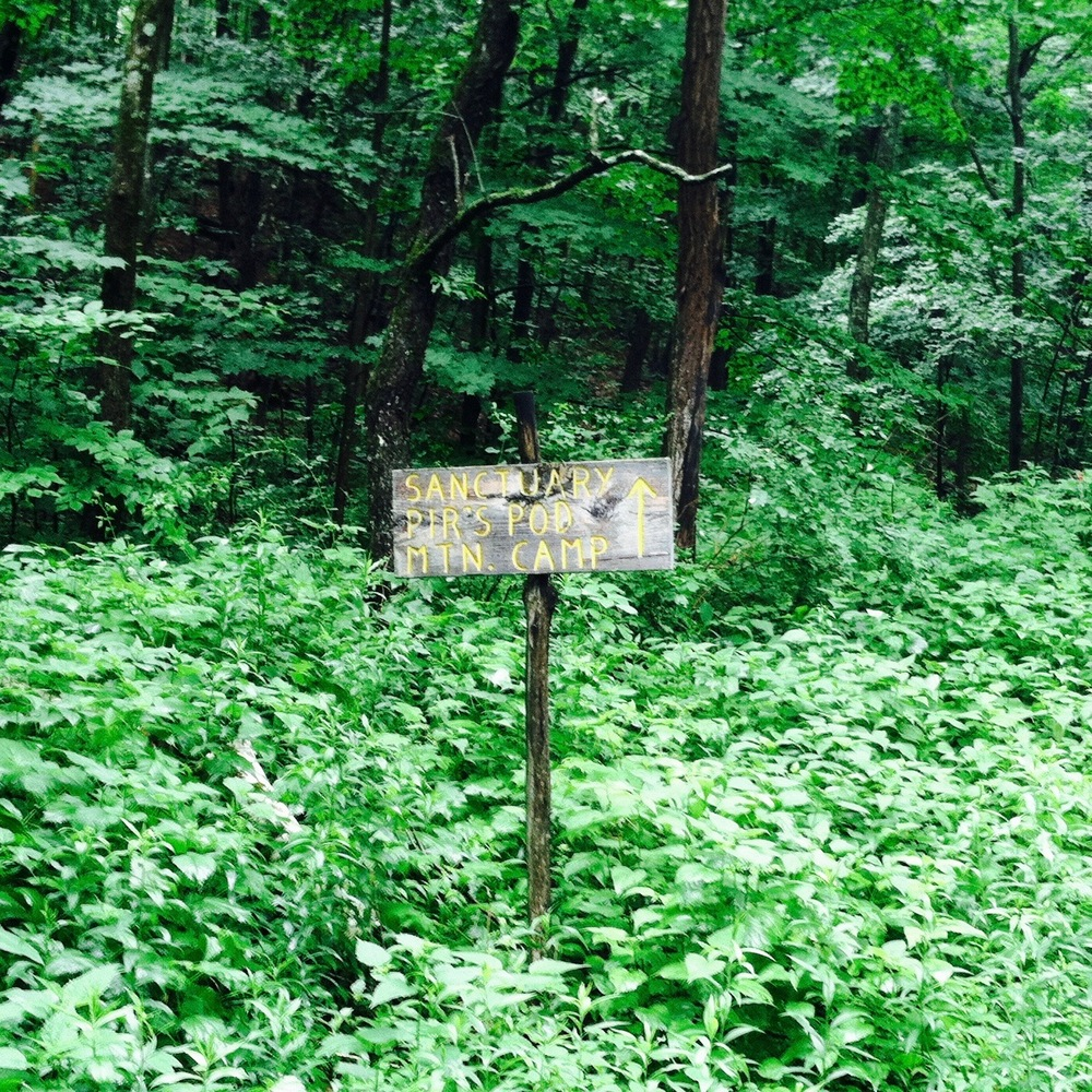 A sign pointing up the road to Pir Vilayat's Pod. Or so it said. — N.M-Y.