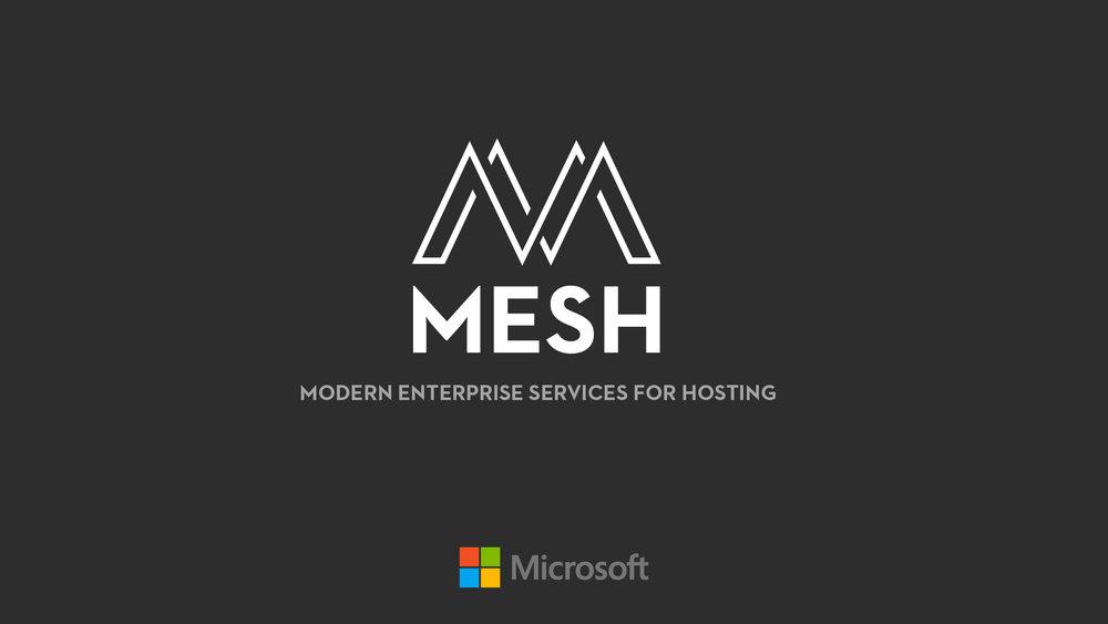 mesh01b.jpg