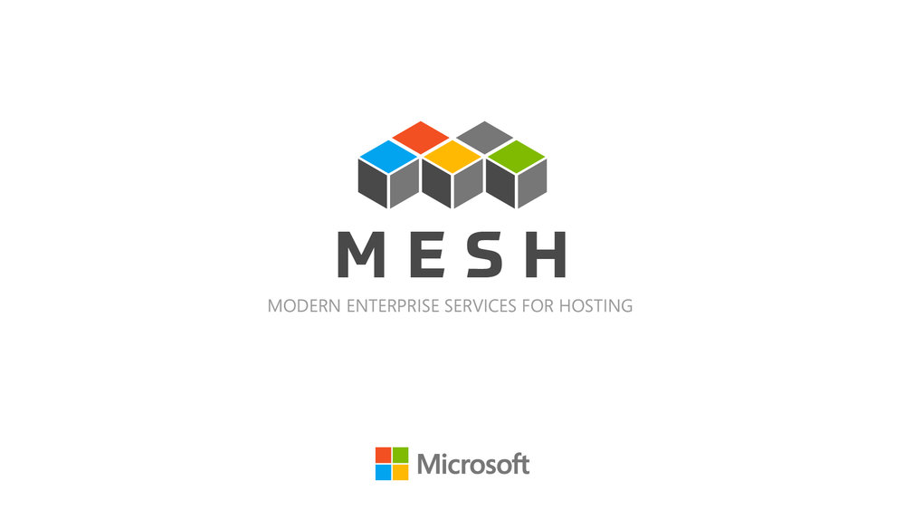 mesh04a.jpg