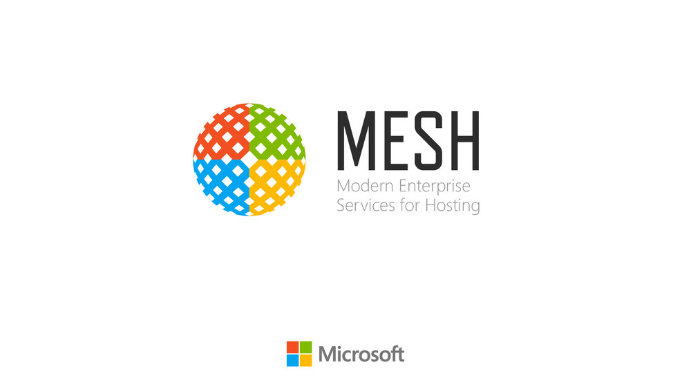 mesh05a.jpg