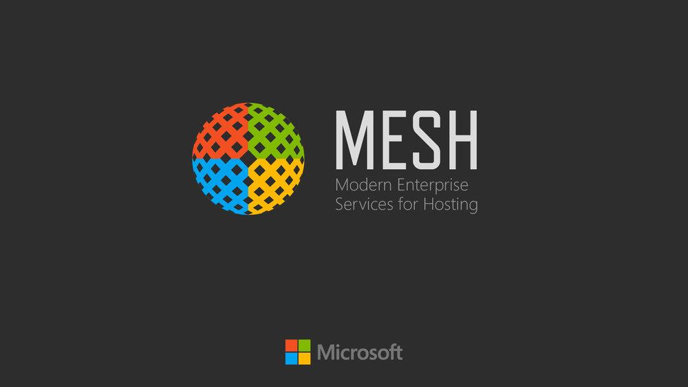 mesh05b.jpg