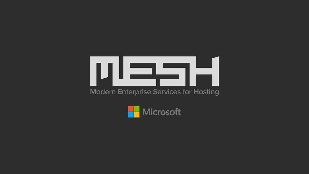 mesh06b.jpg