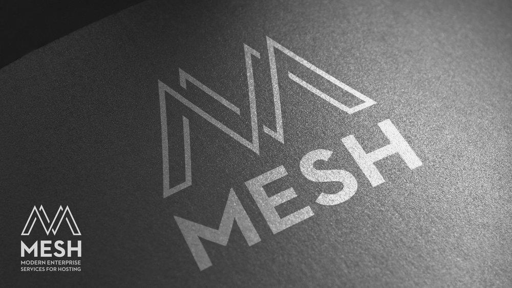 mesh-logo.jpg