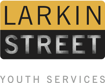 Larkin Street Youth Services - Chief Development OfficerSan Francisco, California