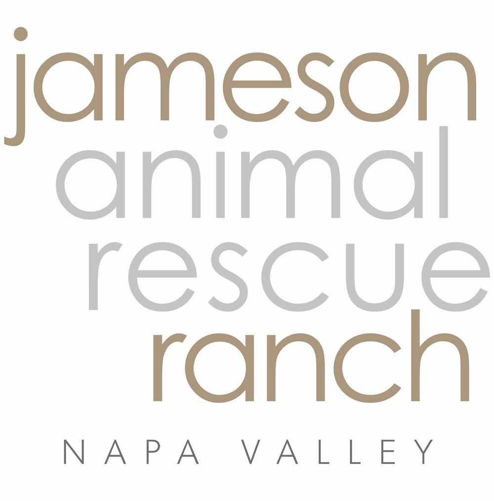 Jameson Animal Rescue Ranch - Director of DevelopmentNapa Valley, California