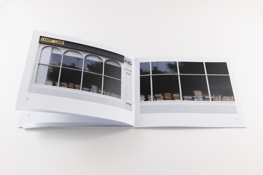 CelesteCebra-bookB.jpg