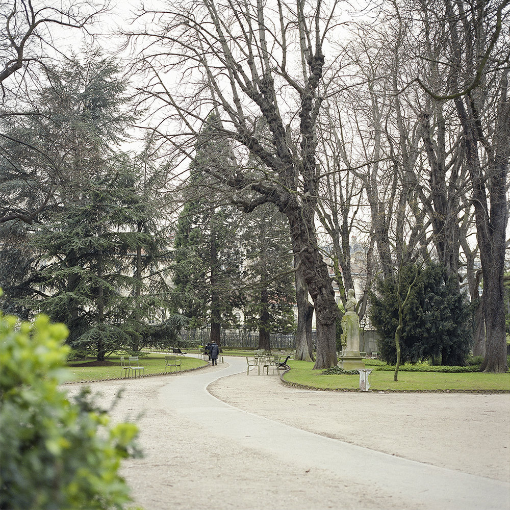 19.03.16 Jardin du Luxembourg , 2016 archival photographic print, 42 x 42 cm