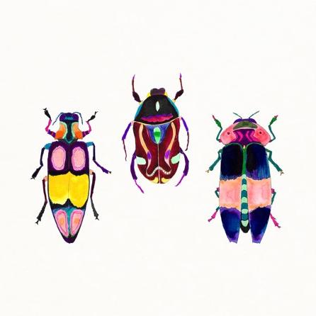 3 Beetles, Sarah Martinez of Etsy shop Snoogs & Wilde
