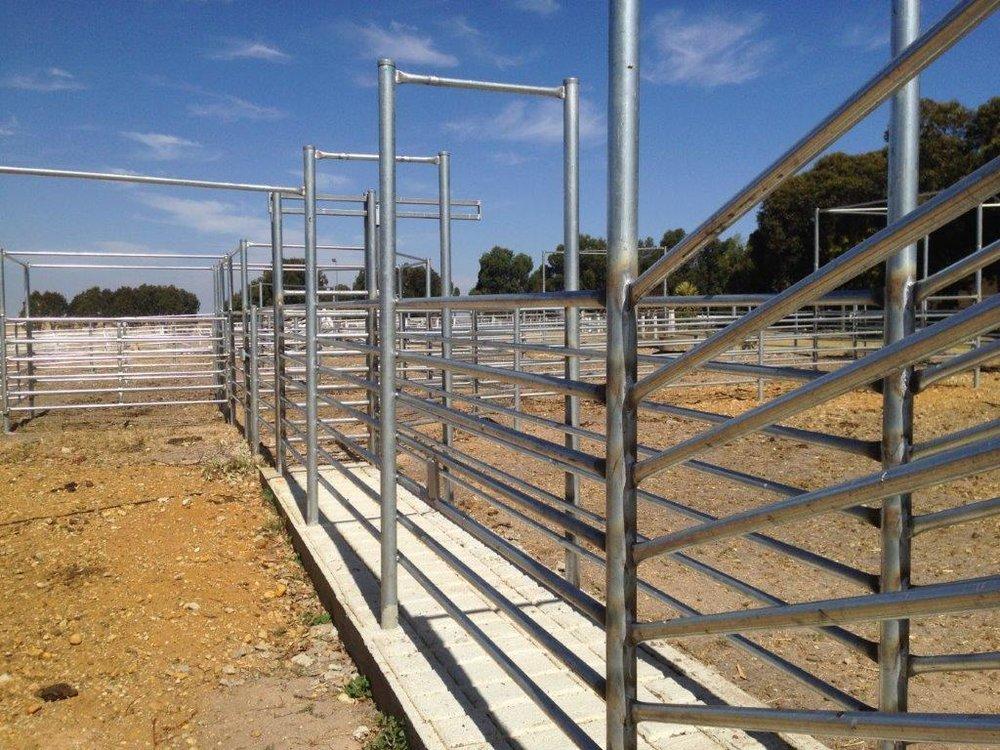 fencing_vic_residential_1.jpg