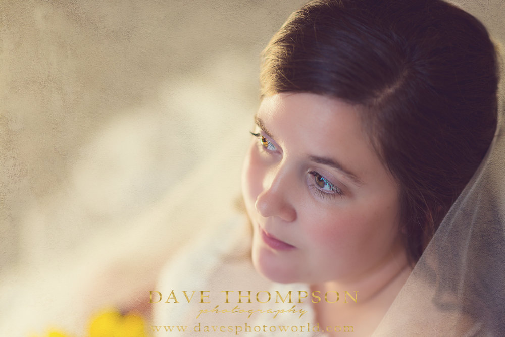 Soft Bridal Portrait