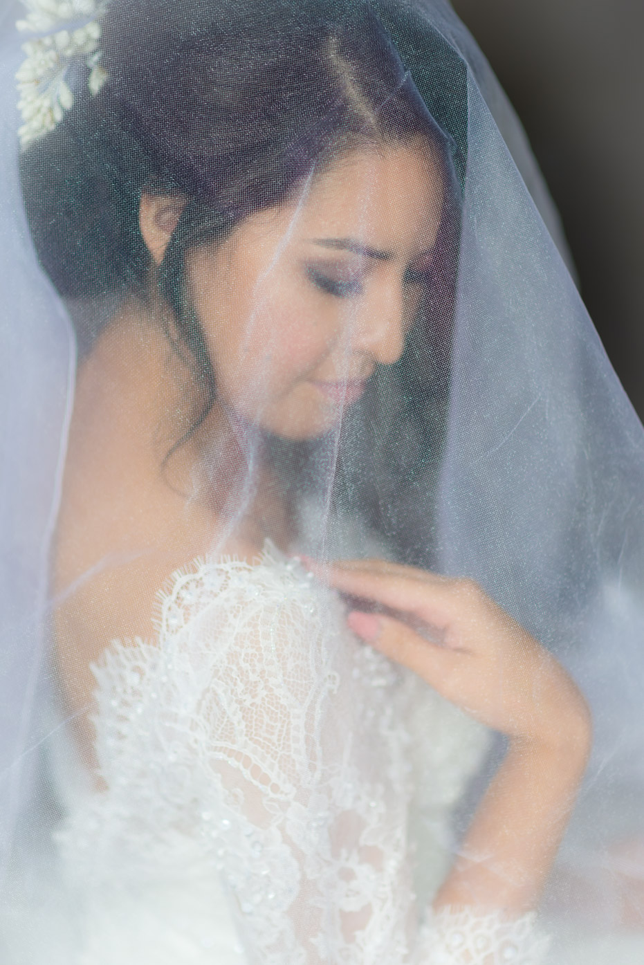 Bridal Veil and Dress Portrait