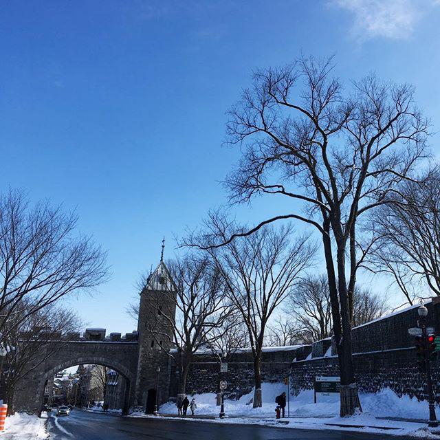 Les portes St-Louis sous le soleil de février! . . . #lesloftsdutresor #vieuxquebec #oldquebec #portestlouis #fevrier #quebec