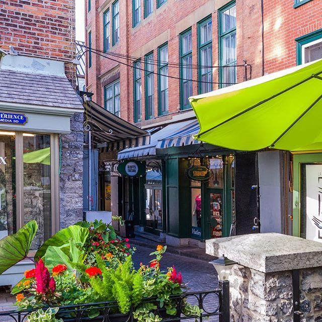 La magnifique rue du Trésor . . . #lesloftsdutresor #leslofts #lesloftsqc #vieuxquebec #oldquebec #viedeloft #ruedutresor #tresor #residencedetourisme