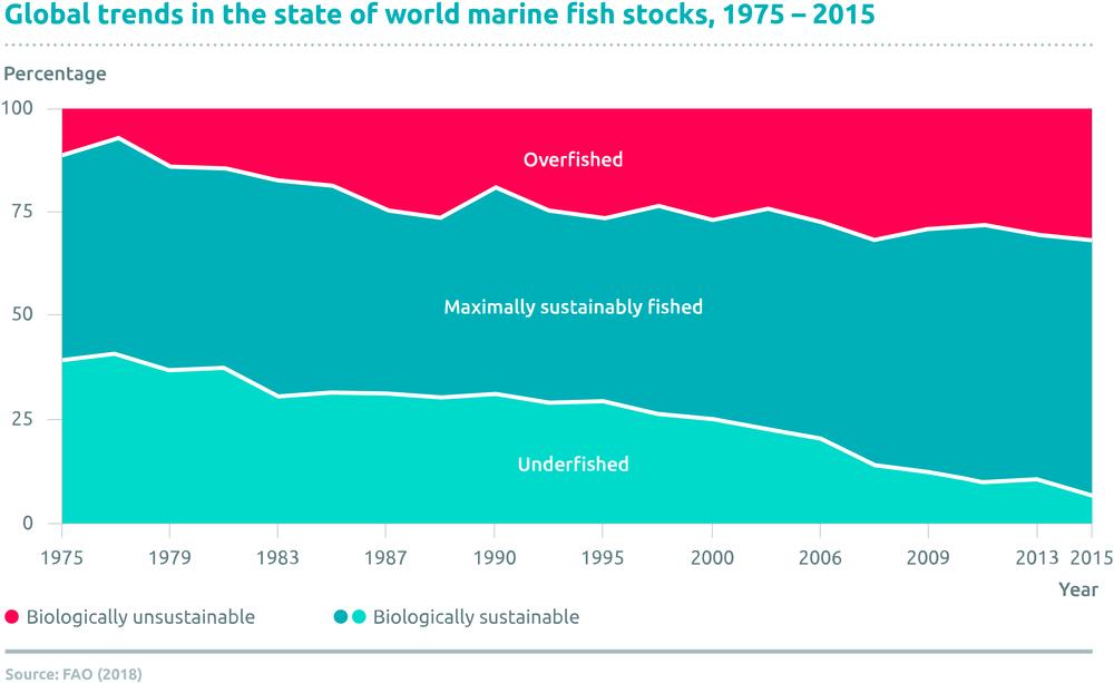 Overfishing_Web-f71df05c.png