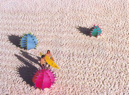 urchins SxSea 1997