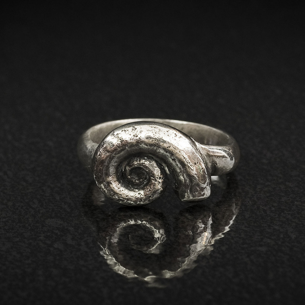 Spirula Shell Ring