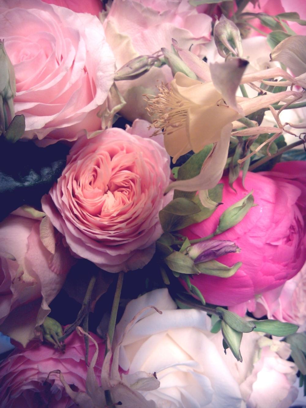 instacam_2012-05-07_07-24-40-.jpg