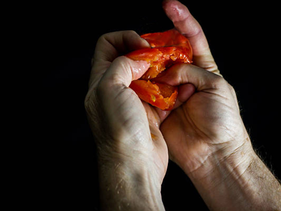 hands with persimmon.jpg