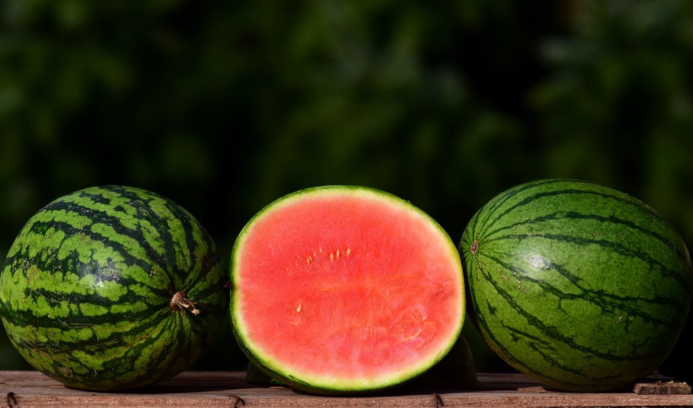 melon-2691415_1920.jpg