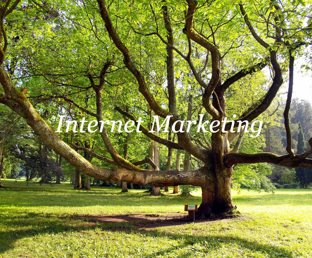 _InternetMarketing5-Itlc.jpg