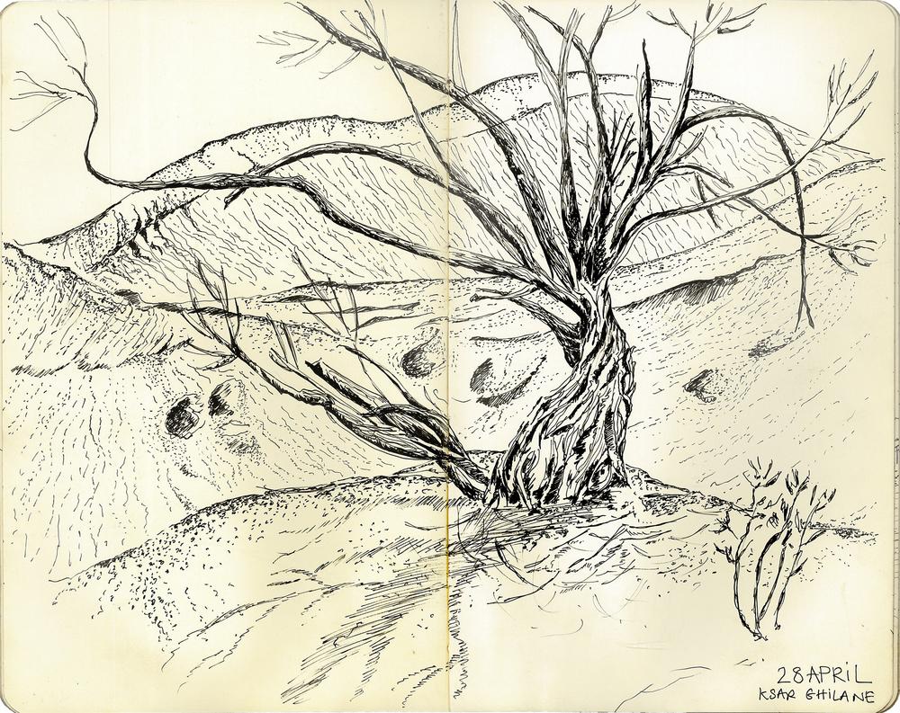 41- Kasr Ghilan dunes.jpg