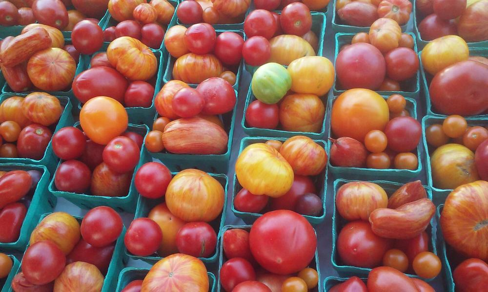 Heirloom Tomatoes at Liberty Farms.jpg