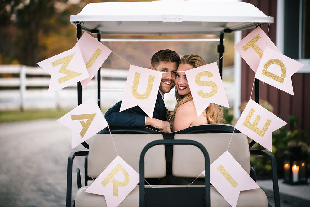 Cart with Driver - A 6 person golf cart with a driver from the beginning of your event to the end of the evening. Perfect for less mobile guests, and for the couple to use when doing their photography as they move around the farm.$300