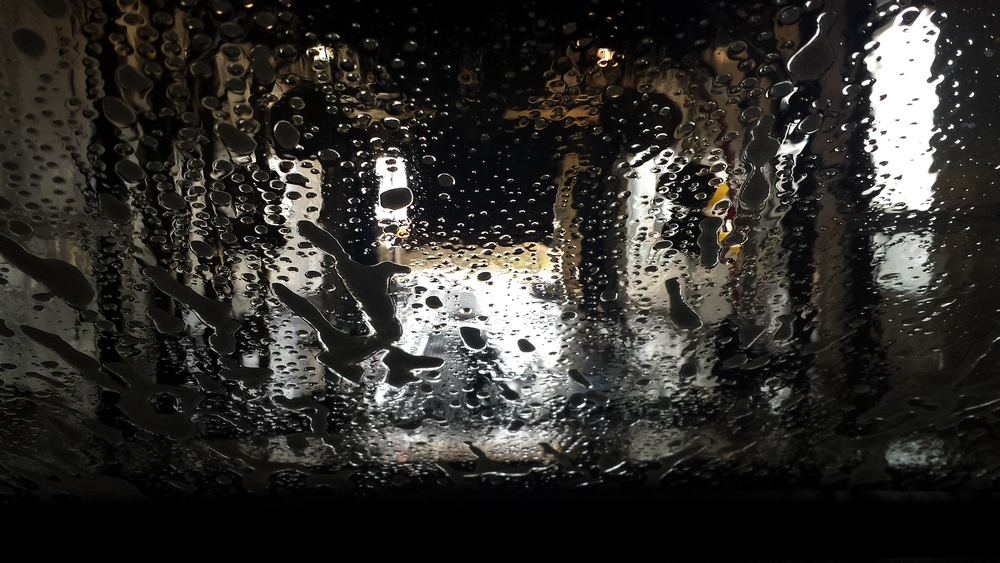 Car wash No. 19