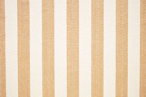 Ceylon Stripe - Gold & Cream