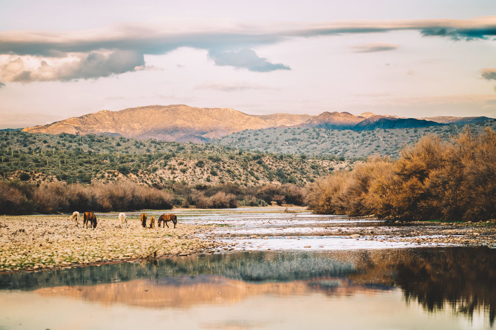 Buck Deitz Photography Arizona Engagement Session-6.jpg