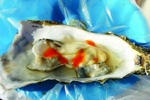 oyster valle.jpg