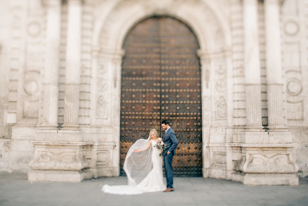 Bride and Groom Portrait Vienna Glenn Wedding Photography