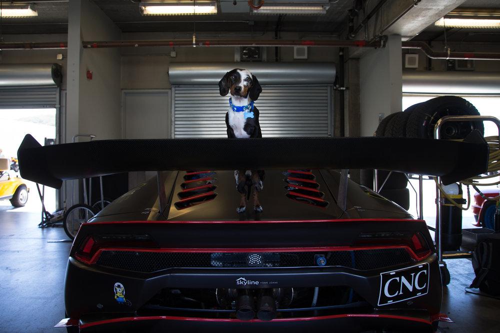 Steven-Racing-Laguna-20180603-97078.jpg