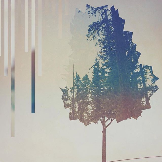 "Edit by @isaiah_fx ""🌳"" #lorystripes @fragmentapp  Awesome layout with minimal design elements!  Follow @pixiteapps for continued updates, as this channel will no longer be active after 02/14/2016."