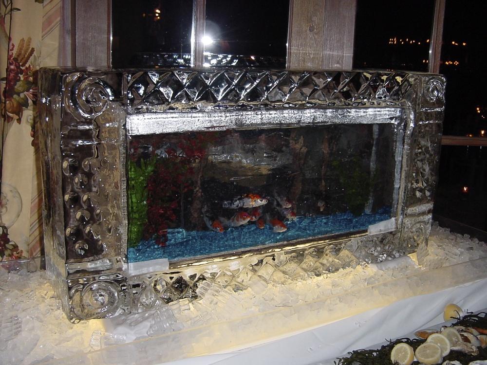 2-21-04 Live Fish Tank 11.jpg