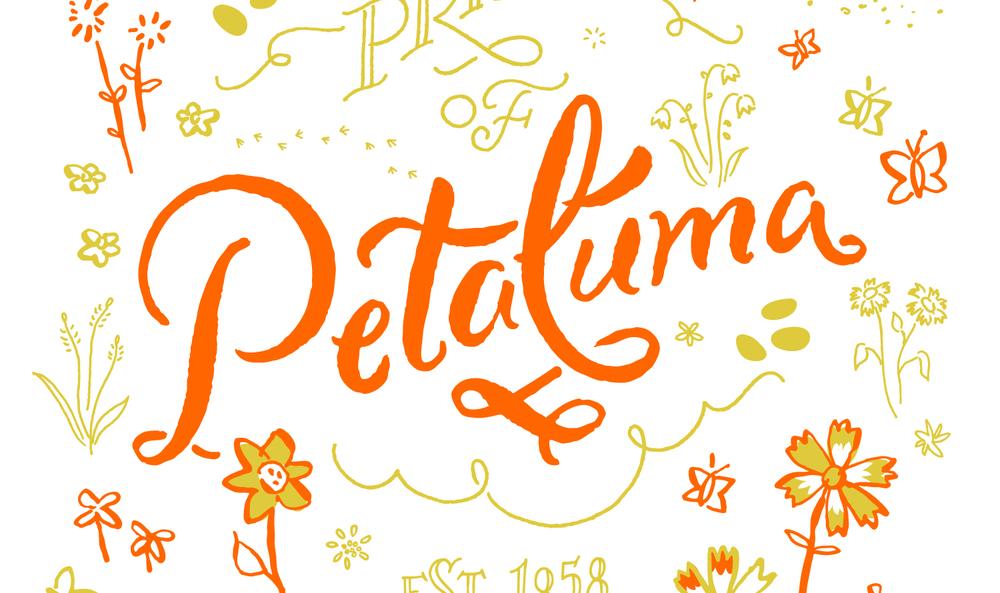NickyOvitt_PetalumaPride_Detail.jpg