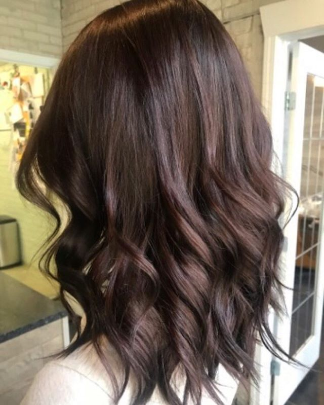 Fresh Fall Hair! 🍂🍁🍃 #redken #redkenshadeseqgloss #theloftwinnipeg #fallhair #fromblondetobrown #warmtones