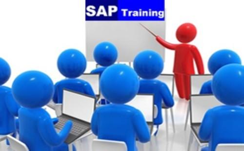 SAP Training   Clarionttech training courses — Clarionttech Services Ltd