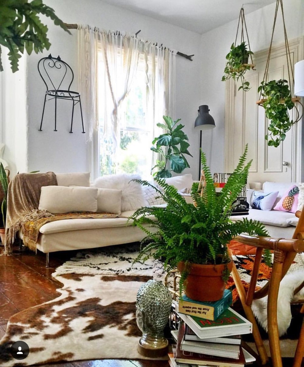 Then I Remember That Basic Is Boring And My Mid Mod Eclectic Plant Loving Space Wild Quirky 100 Me