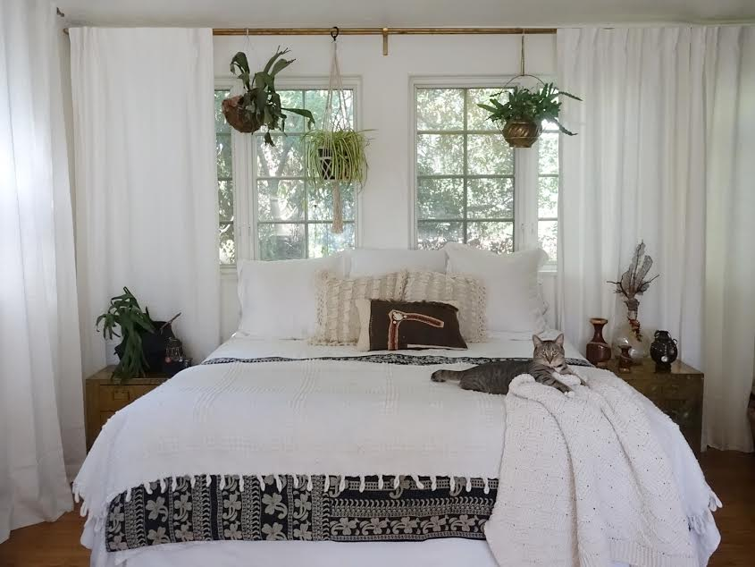 A stag horn plant sits on the nightstand and another hangs above the bed in addition to a spider plant and a blue star fern.